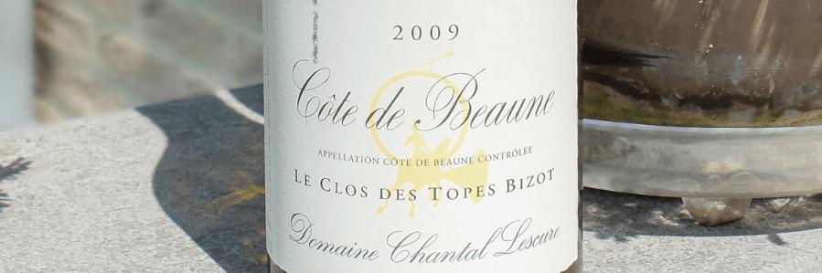 Cote de Beaune Wines