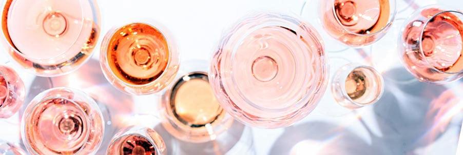 Provence Wines