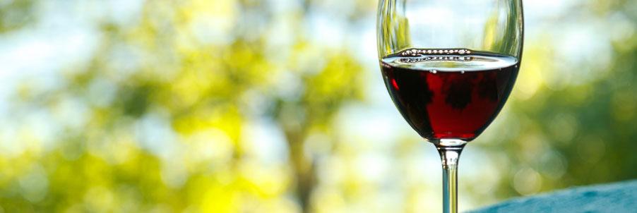 Cote de Nuits Wines