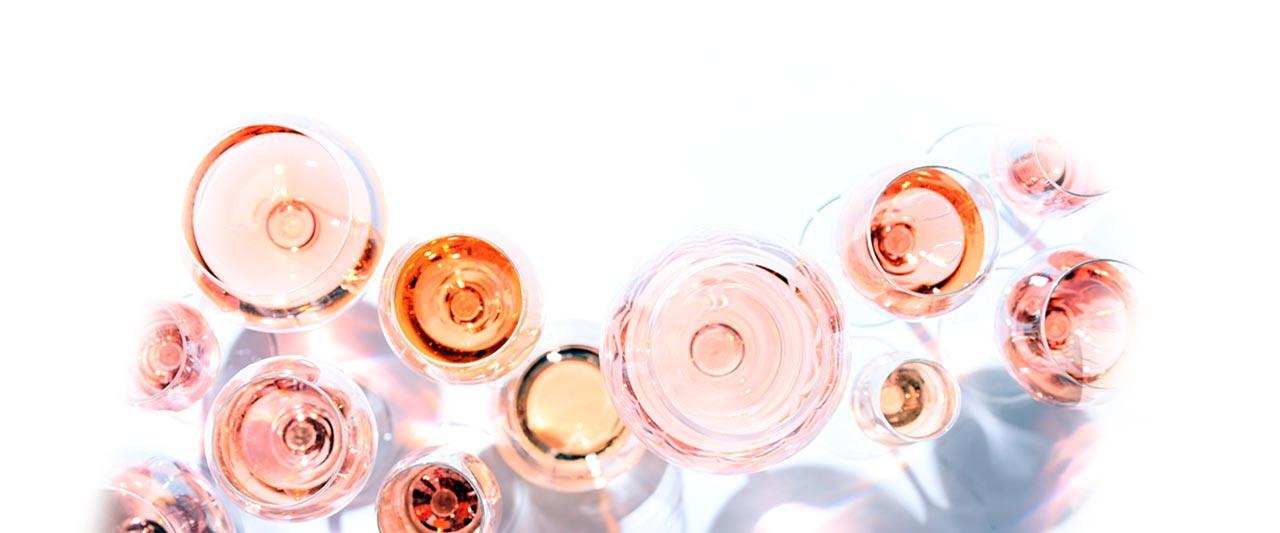 Summer Rose Wines
